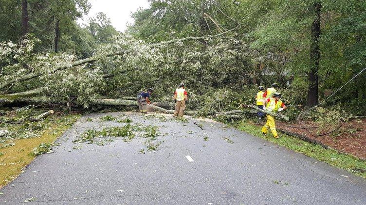 Hurricane Irma - Newton County