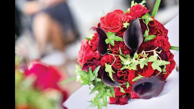 flowers 598697 422295637844867 77755491 n