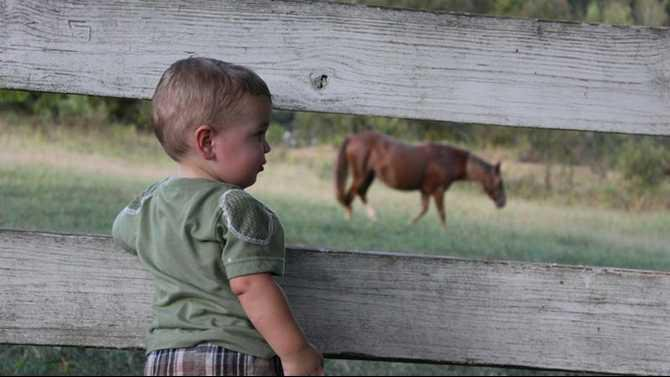 Russie-Skinner-boy-and-hors
