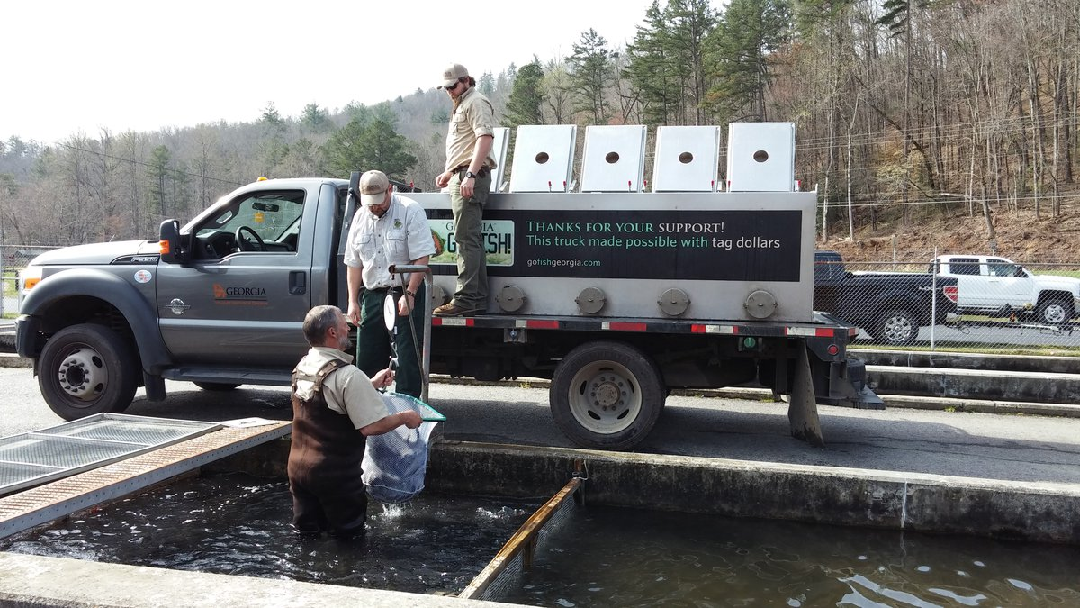 Trout stocking: What's new for 2018? - The Covington News